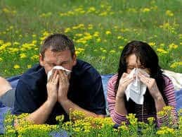 Allergies and Neck Pain