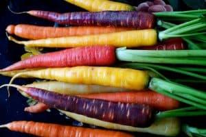 probiotic carrot